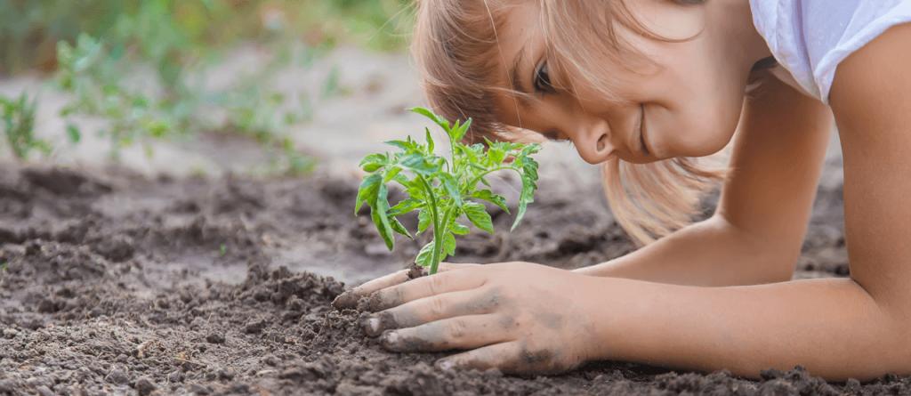 A Föld órája – 5 tipp a környezetvédelemért